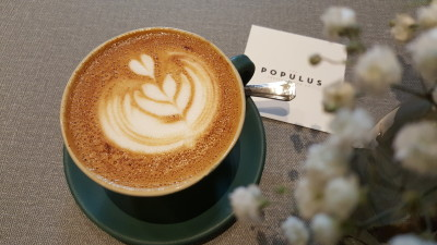 The Populus Coffee & Food Co - Cappuccino