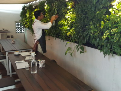 Botanist Cafe At Neil Road In Outram, Singapore - Outdoor dinning area