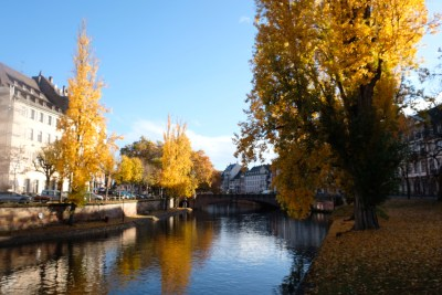 Strasbourg Travel, Must See & Do, Must Eat in 28 Hours - Another view I like