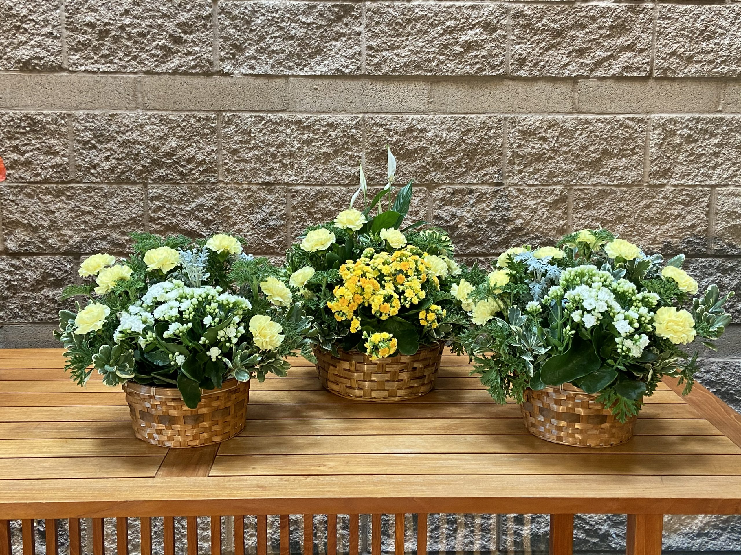 Dish Garden for Funeral