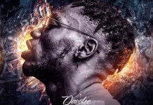Davolee Festival Bar full album ep download