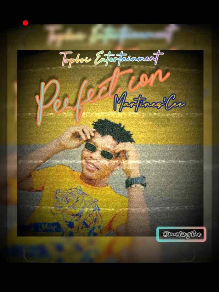 Martines Cee Perfection mp3 download
