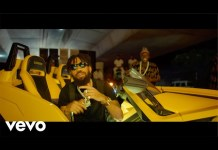 Phyno Ft Peruzzi For the Money Video mp4 download