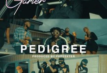 Gamer Pedigree mp3 download