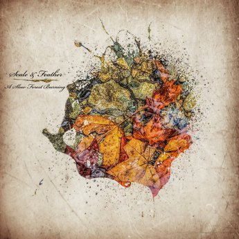 Scale And Feather A Slow Forest Building album ep download