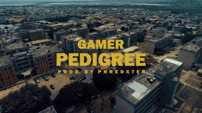 Gamer Pedigree Video mp4 download