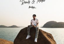 Joeboy Something Between Beauty & Magic album ep download