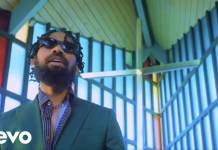 Phyno BIA Video mp4 download
