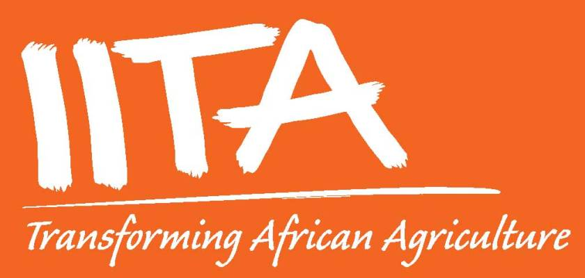 International Institute of Tropical Agriculture IITA