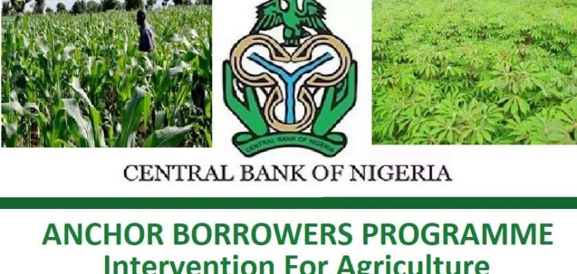 CBN Anchor Borrowers Programme