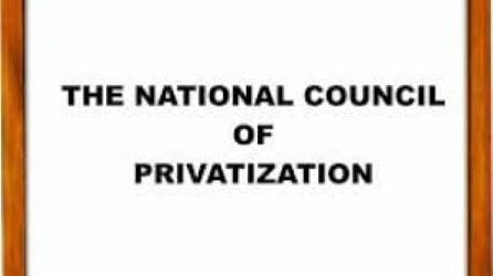 National Council On Privatization