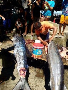 Unbelievable: See the Fish Caught With 'Tattoos' On Its Body in Philippines (Photos)
