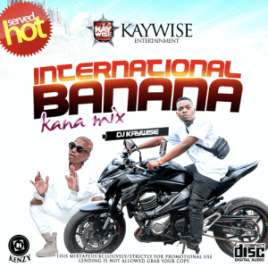 "DOWNLOAD MIXTAPE DJ Kaywise – ""Kana Mix"""