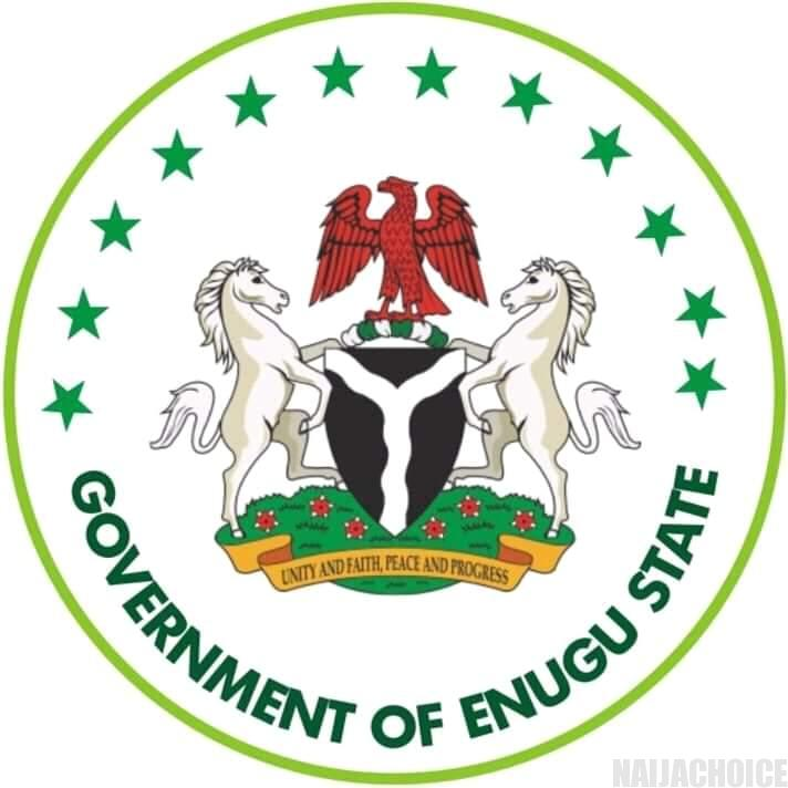 Coronavirus: Enugu Government Directs Closure  Of Schools