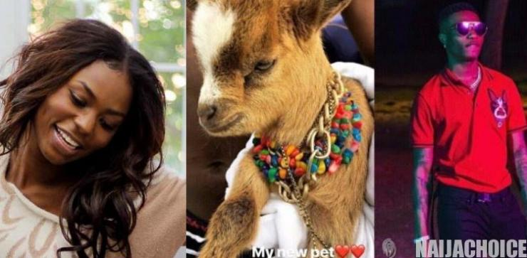 Niyola questions Wizkid over the whereabout of his pet goat 2years after he acquired it
