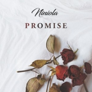 DOWNLOAD MP3: Niniola – Promise