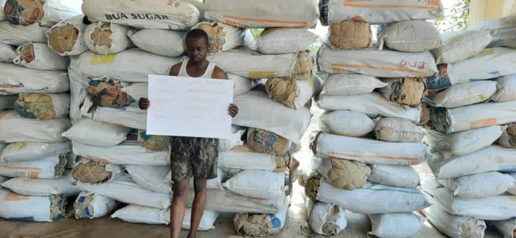Most Wanted Drug Baron In Nasarawa, Sami Ashoko Finally Caught By NDLEA (Pictures)