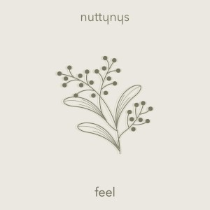 DOWNLOAD MP3: Nutty Nys – Feel