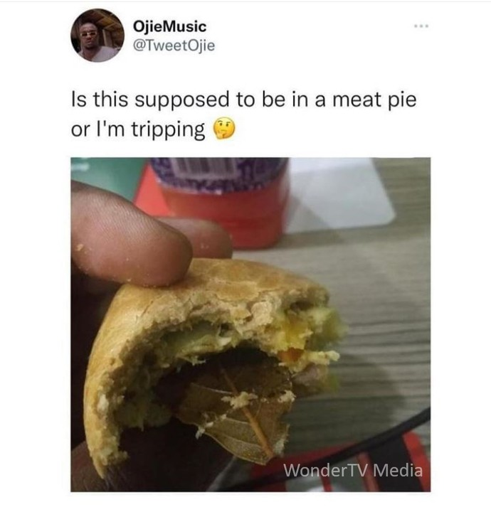 Checkout What A Man Found Inside A Meat Pie (Photo)