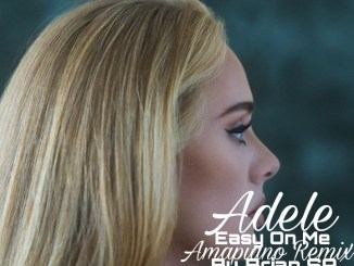 DOWNLOAD MP3: Adele – Easy On Me (Brian SA's Amapiano Remix)