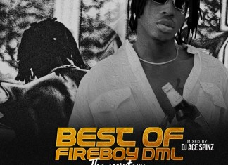DJ Ace Spinz – Best Of Fireboy DML (LTG & Apollo Mix)