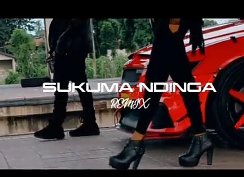 Rosa Ree – Sukuma Ndinga (Remix) Ft. Rayvanny mp3 download