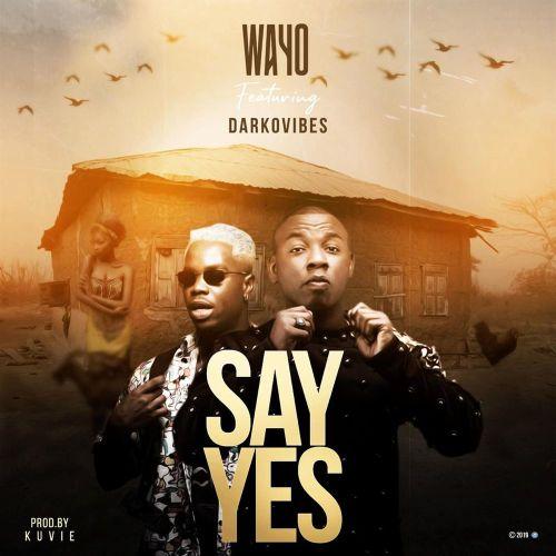Wayo – Say Yes Ft. Darkovibes mp3 download