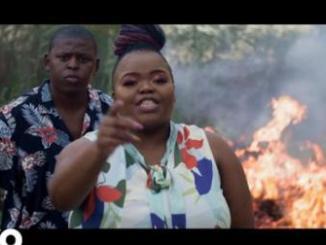 VIDEO: Distruction Boyz – Ubumnandi Ft. Nokwazi, DJ Tira