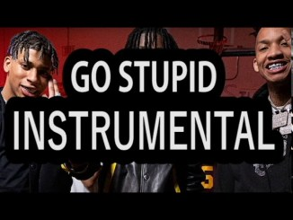 Polo G, Stunna 4 Vegas & NLE Choppa – Go Stupid (Instrumental)