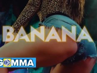 Willy Paul – Banana