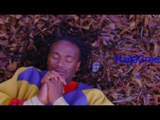 Jah Prayzah – Hokoyo