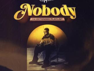 DJ Neptune – Nobody (Dancehall Remix) Ft. Konshens, Joeboy, J.Derobie
