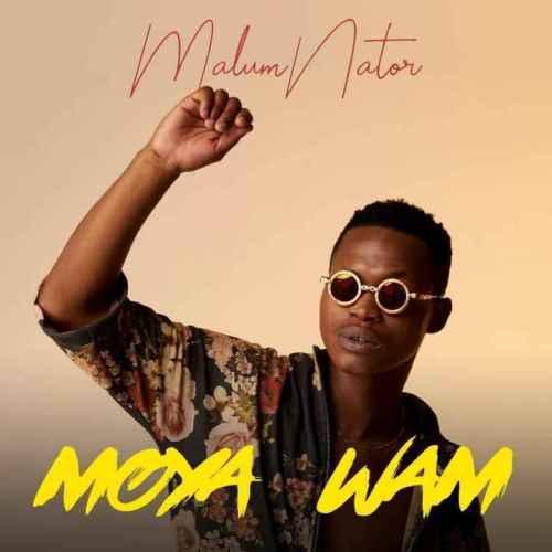 MalumNator – Aw'Yebo Ft. De Mthuda, Ntokzin & MFR Souls mp3 download