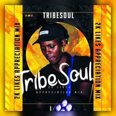 TribeSoul – 2K Appreciation Mix mp3 download