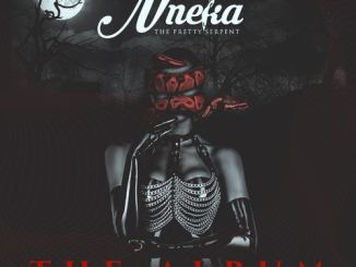 Larry Gaaga – Nneka (The Soundtrack)