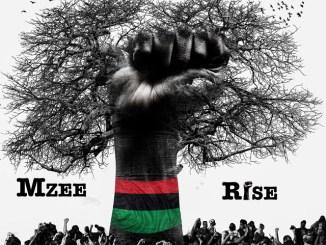 Album: Mzee – Rise