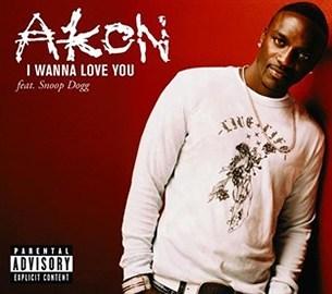 Akon Ft. Snoop Dogg - I Wanna Love[Fuck] You + Remix mp3 download