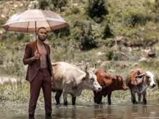 Zulu Mkhathini – Draining