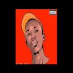 Dzii Da Killer – Basic Instruction (Main Mix) mp3 download