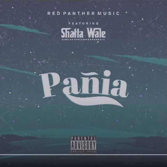 Shatta Wale – Panai mp3 download
