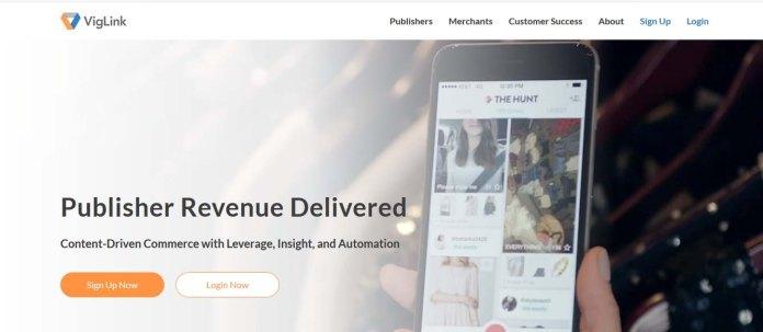 Homepage of viglink.com