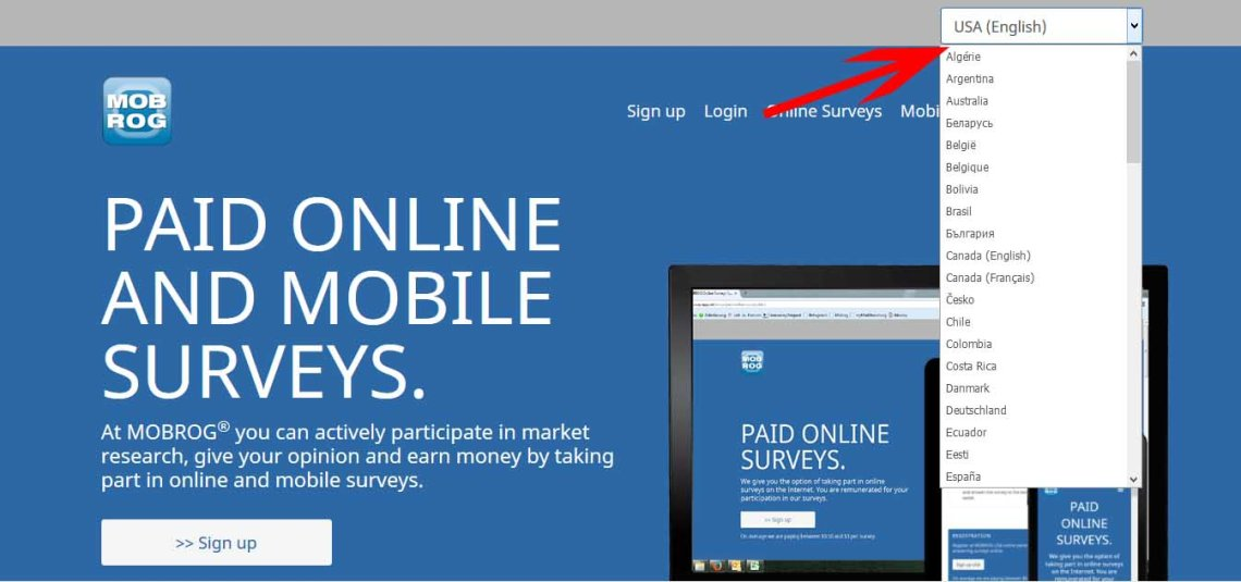 Mobrog Homepage: Paid online and mobile surveys.
