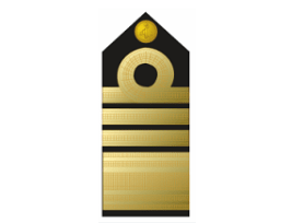 Nigerian Navy Ranks Salary Structure 2019, Insignia & Quick Facts
