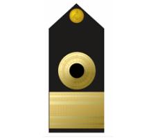 Nigerian Navy Commodore badge / insignia