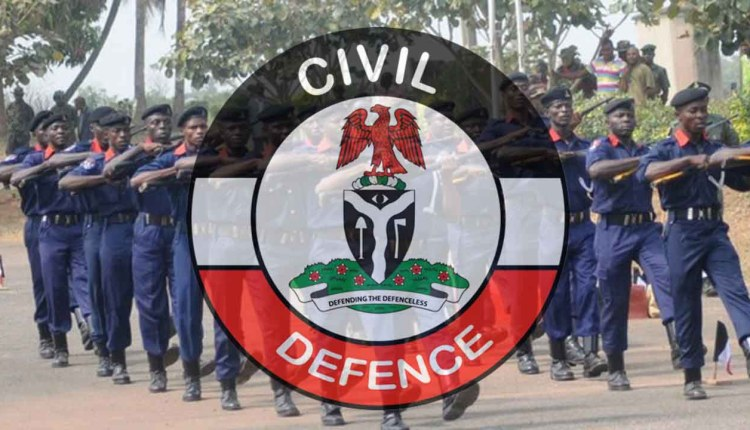 Nigeria Civil Defence troops and logo