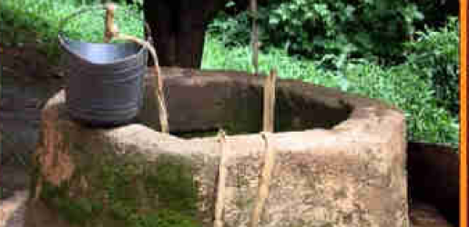 Man murders his wife, dumps corpse in well