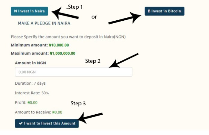 making a pledge on Wazobia investment website