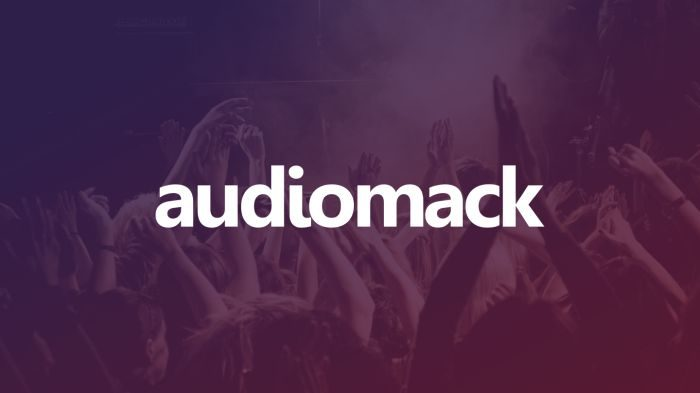 How To Download Song Directly To Your Phone Music Library From Audiomack (Free Tutorial)
