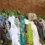 Panic in Southern Kaduna as suspected Herdsmen massacre claims several lives (Graphic photos)