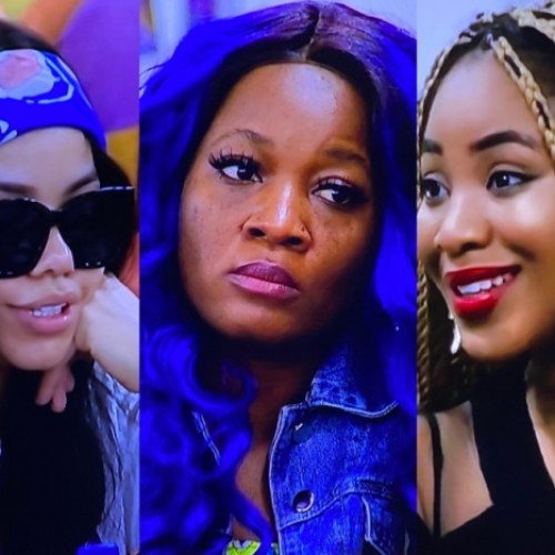 BBNaija: See Who Erica, Nengi And Laycon Named As The Most Difficult Housemate